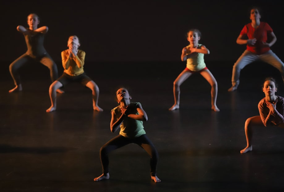 lg-dance show dansstijl